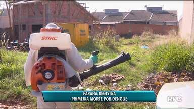 Confirmada morte por dengue no Paraná, depois de dois anos - Uma mulher de 83 anos de Foz do Iguaçu morreu em decorrência da doença.