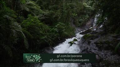 Moradores de Adrianópolis podem participar da campanha Brasil Que Eu Quero - Veja como representar sua cidade e aparecer em um dos telejornais da Globo.
