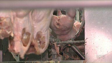 União Europeia anuncia proibição de compra de carne de frango de frigoríficos no Paraná - Anúncio foi feito hoje