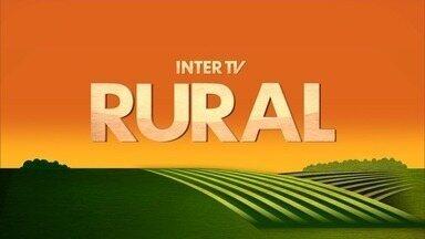 Inter TV Rural - Edição de domingo, 22/04/2018 - Na íntegra - Inter TV Rural - Edição de domingo, 22/04/2018 - Na íntegra