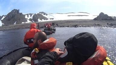 Antártida é destino de pesquisa de cientistas brasileiros - Pesquisadores buscam vestígios de uma floresta que existiu no local