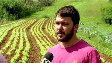 RJ Rural mostra projetos de auxílio ao produtor - 85% dos produtores são de agricultura familiar.