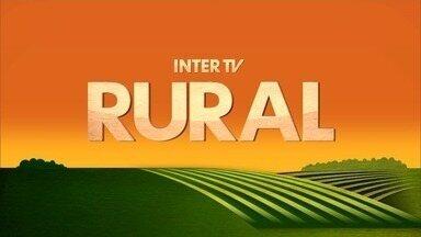 Inter TV Rural - Edição de domingo, 29/04/2018 - Na íntegra - Inter TV Rural - Edição de domingo, 29/04/2018 - Na íntegra