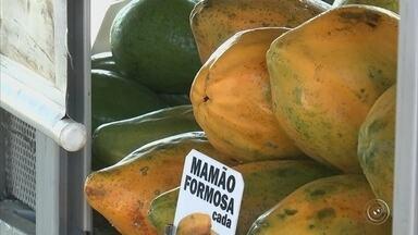 Frutaria em terminal de ônibus melhora alimentação da população em Jundiaí - Um projeto nos terminais de ônibus em Jundiaí está fazendo sucesso. Em vez de um salgado, as pessoas podem comprar frutas e aí a alimentação da população fica muito melhor.