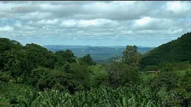 Chuvas aumentam movimento de turistas em Triunfo - A cidade tem lindas cachoeiras e paisagens como atrativos
