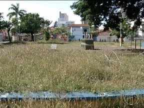 Moradores reclamam de mato alto em praças de Montes Claros - Situação incomoda moradores de vários bairros.