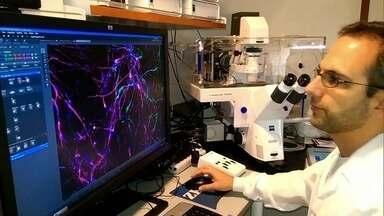Crise afeta produção científica brasileira