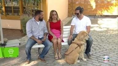 'É de Casa' mostra como é o treinamento de um Cão-guia - Conheça a rotina dos cãezinhos