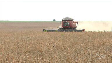 Unidade de pesquisa e transferência de tecnologia é instalada em Balsas - A unidade vai trabalhar no desenvolvimento de produtos do agronegócio voltados para a sustentabilidade ambiental e a segurança alimentar.