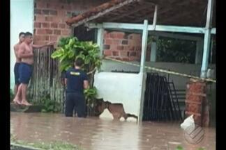 Em Bragança, 648 famílias foram remanejadas de suas casas por causa da cheia do Rio Grande - Na quarta-feira (16), Prefeitura, Defesa Civil, Polícia Militar e Corpo de Bombeiros criaram o Comitê de Crise no município