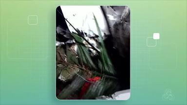 Ouro é encontrado em destroços de avião que caiu no Amazonas - Dois corpos também foram localizados na floresta.