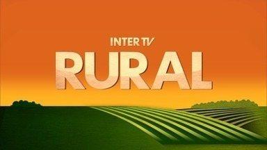Inter TV Rural - Edição de domingo, 27/05/2018 - Na íntegra - Inter TV Rural - Edição de domingo, 27/05/2018 - Na íntegra