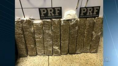Passageiro é preso por transportar 10 kg de maconha em bagagem dentro de ônibus - Agentes desconfiaram do cheiro do documento dele e encontraram o entorpecente, na BR-060.