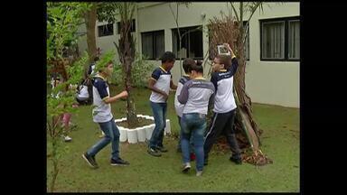 Alunos têm aulas de educação ambientação em escola de Mogi das Cruzes - No Dia Nacional do Meio Ambiente, diversas ações estão sendo realizadas na região. Uma concessionária de energia distribui sementes de plantas em Mogi das Cruzes.