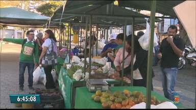 Feira agroecológica acontece na manhã de hoje em Campina Grande - A feira faz parte da semana do meio ambiente vai passar toda a manhã na Praça da Bandeira.