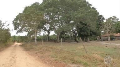 Idosa é agredida durante roubo em propriedade rural de Três Lagoas - Na cidade, a violência na zona rural assusta produtores.