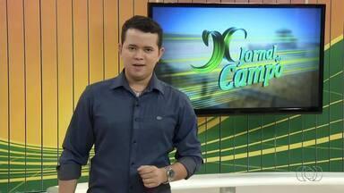 Confira os destaques do Jornal do Campo deste domingo (10) - Confira os destaques do Jornal do Campo deste domingo (10)