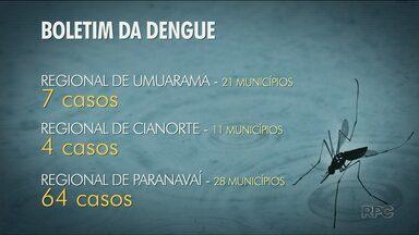 Noroeste tem mais de 70 casos confirmados de dengue - Regional de Paranavaí tem 64 casos da doença.