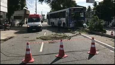 JPB2JP: Motorista passa mal e mais um ônibus fica desgovernado em João Pessoa - Acidente em Cruz das Armas.