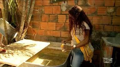 Combate ao mosquito Aedes aegypti é intensificado em Imperatriz - Combate ao mosquito Aedes aegypti é intensificado em Imperatriz. Município não corre grandes riscos.