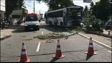 Três acidentes envolvendo ônibus são registrados em JP nos últimos 10 dias - Motorista contou que sentiu a pressão cair. Três passageiros estavam no ônibus e uma mulher teve ferimentos leves.