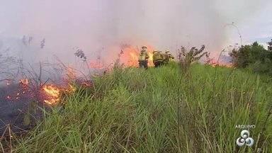 Sistema de Proteção da Amazônia debate com órgãos ambientais a prevenção de queimadas - Maríndia Moura