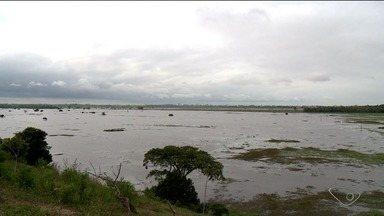 Após cheia da lagoa Juparanã, pastagens ficam cheias de lama, no Norte do ES - Vários produtores estão tendo prejuízos.
