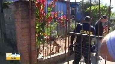 Caso Vitória Gabrielly: novos depoimentos hoje - Casal suspeito de participar do crime deve prestar novo depoimento.