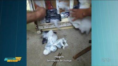 Agentes encontram celulares em geladeira entregue à presos em Umuarama - O preso que receberia a geladeira e a mulher que entregou o eletrodoméstico já foram identificados.