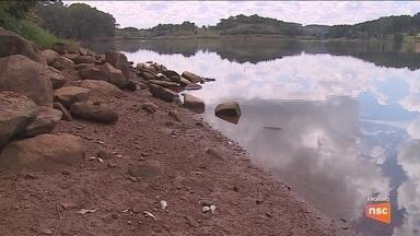 Esgoto despejado e baixo nível do rio causaram morte de peixes em Lages, diz investigação - Esgoto despejado e baixo nível do rio causaram morte de peixes em Lages, diz investigação