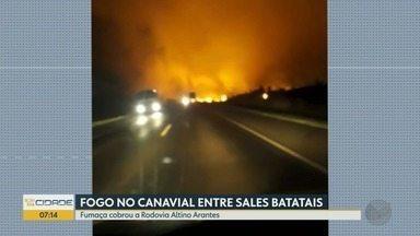 Incêndio em canavial assusta moradores entre Sales Oliveira e Batatais, SP - Fumaça atrapalhou motoristas na Rodovia Altino Arantes na noite de quinta-feira (5).