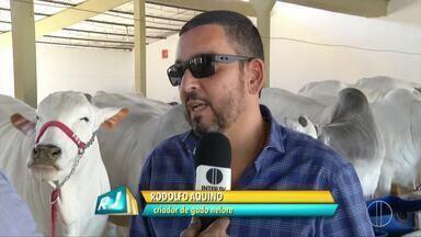 Expoagro agita o fim de semana em Campos, no RJ - Assista a seguir.