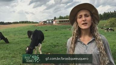 TV Globo quer saber: Que Brasil você quer para o futuro? - Envie sua mensagem pra www.g1.com.br/ribeirao ou pelo whatsapp (16)99700-0000
