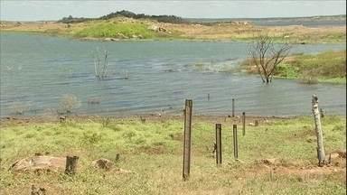 Regiões do nordeste tiveram má distribuição de chuva - No Ceará até choveu mais esse ano. Mas em muitos lugares o volume ficou abaixo do esperado. Em muitas propriedades as espigas de milho não vingaram e o pasto é insuficiente para matar a fome dos animais.