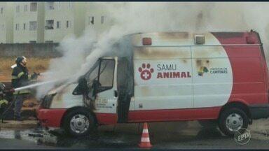 Ambulância do Samu Animal pega fogo em Hortolândia - Pane no motor teria provocado o incêndio no veículo que faria o resgate de um animal na região do bairro Santa Esmeralda. Não houve feridos.