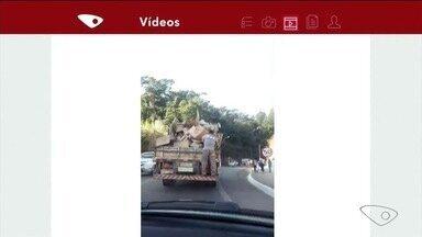 Vídeo flagra pessoa pendurada em traseira de caminhão em estrada em Jerônimo Monteiro, ES - Flagrante aconteceu na BR-482.