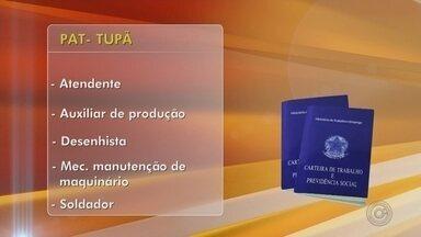 Confira as oportunidades de emprego em Tupã e Ibitinga - Nesta segunda-feira, os PATs de Tupã e Ibitinga estão com oportunidades de emprego. Confira as vagas oferecidas.