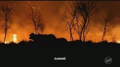 Final de semana registra queimadas nas cidades da região - Sumaré (SP), Piracicaba (SP) e Paulínia (SP) tiveram incêndios em áreas verdes. Ninguém ficou ferido.
