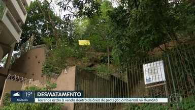 Terrenos estão à venda em área de proteção ambiental no Humaitá - Moradores se queixam de retirada de vegetação em lotes que serão negociados