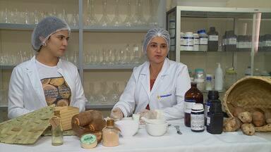Estudantes de Imperatriz criam creme hidratante a partir do óleo de coco babaçu - O trabalho foi orientado por uma farmacêutica e após os primeiros testes, o produto foi aprovado.