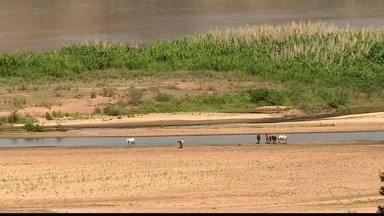 Colatina tem dificuldades em captar água do Rio Doce por causa de bancos de areia - A dica para os moradores é economizar água.