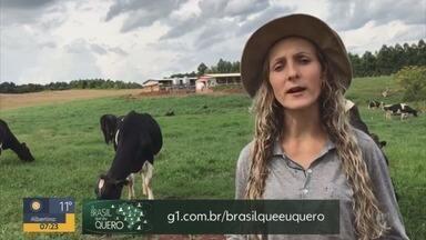 Faça seu vídeo com o tema: o Brasil que eu quero - Faça seu vídeo com o tema: o Brasil que eu quero