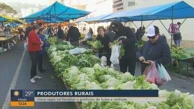 Nova regra vai fiscalizar a produção de frutas e verduras no país - Nova regra vai fiscalizar a produção de frutas e verduras no país