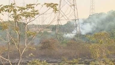 Incêndio atinge área de vegetação em canteiro central da Avenida das Torres - Fato ocorreu por volta das 15h30.