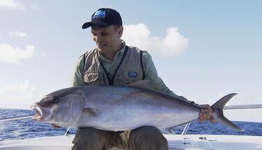Pescaria no norte da Bahia rende peixões - No mar da Bahia o desafio é tirar da água um peixe bom de briga: o olho-de-boi.
