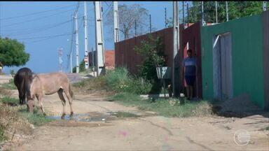 Moradores da Zona Sul reclamam da falta de pavimentação em rua - Moradores da Zona Sul reclamam da falta de pavimentação em rua