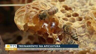 Treinamento em Palmas ensina novas técnicas de colheita de mel para produtores - Treinamento em Palmas ensina novas técnicas de colheita de mel para produtores