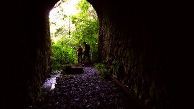 Discover Trail explora trilhas no parque estadual Pico do Marumbi - Discover Trail explora trilhas no parque estadual Pico do Marumbi