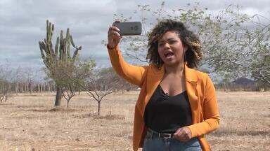'O Brasil que eu quero': envie seu vídeo sobre as expectativas para o futuro - Mais informações você pode encontrar no site g1.com.br/brasilqueeuquero.