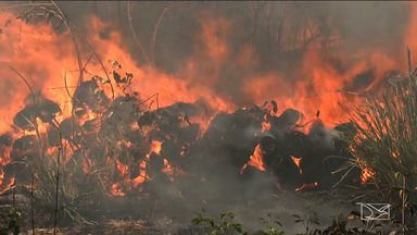 Altas temperaturas colaboram para focos de incêndio em Caxias - Em 2016 o município enfrentou grandes queimadas a ponto de deixar várias famílias desabrigadas.